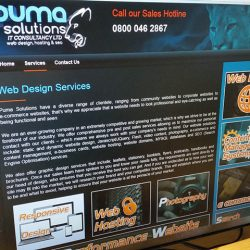 Screenshot of new Puma Solutions website